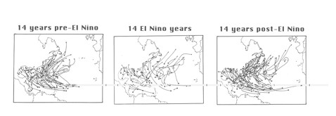 Maps showing North Atlantic hurricane tracks from the year prior, during, and after an El Nino